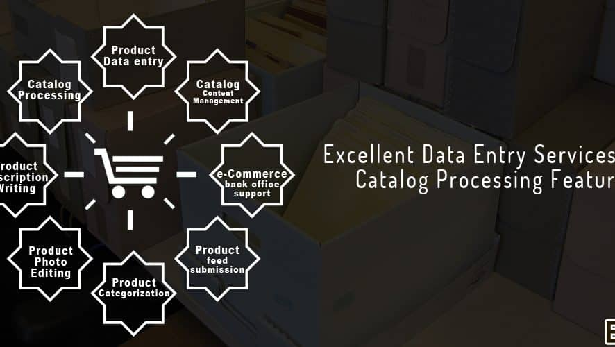 Excellent Data Entry Services With Catalog Processing Features