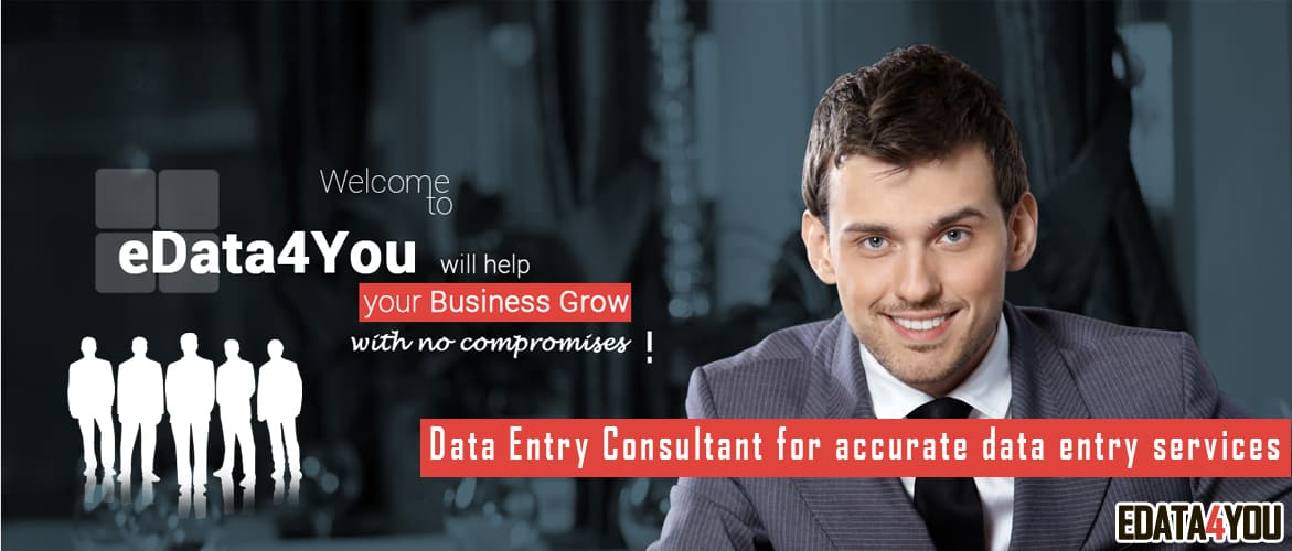 Data Entry Consultant For Accurate Data Entry Services